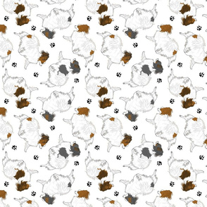 Trotting Papillons and paw prints - white