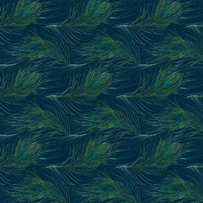 Peacock feathers in teal