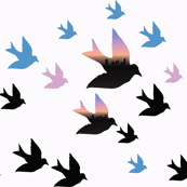 Skyline bird