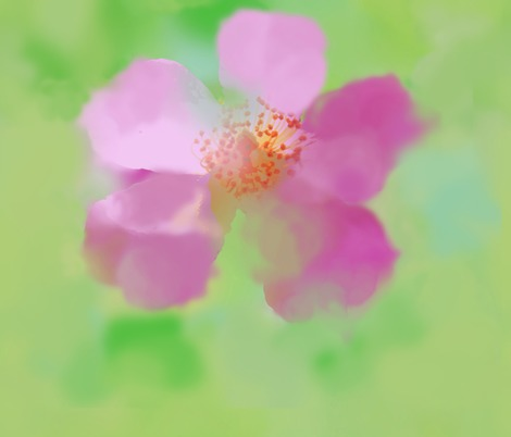 Rballerina_rose_watercolor_textile_contest133607preview