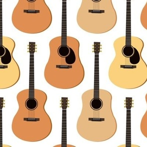 Acoustic Guitars
