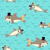 Dapper Sharks