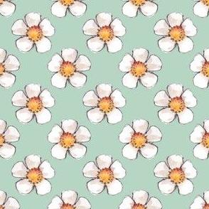 White fowers