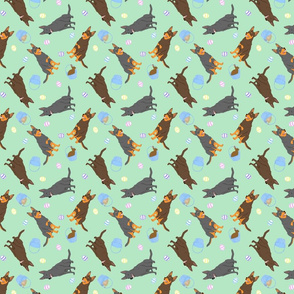 Tiny Australian Kelpies - Easter
