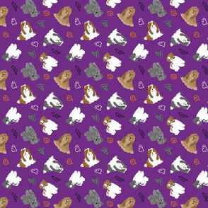 Tiny Shih Tzus - Halloween