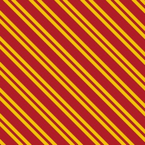Magic School Inspired Gryffin Lion Diagonal Double Stripes