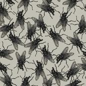 Flies on grey/beige