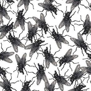 Flies black&white