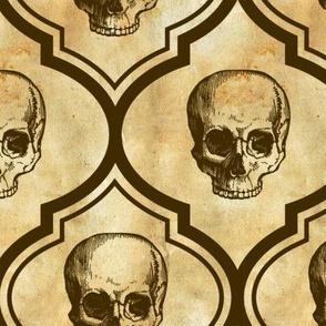 French Skulls - brown parchment