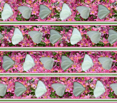 Rbutterfly_and_crocus_stripe_preview