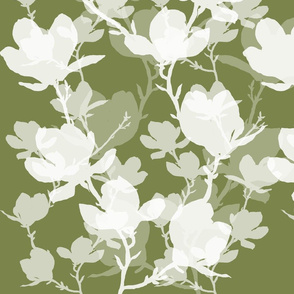 magnoliatree_olive