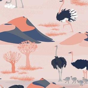 Ostriches Of The Kalahari