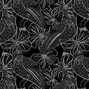 Trickster Raven