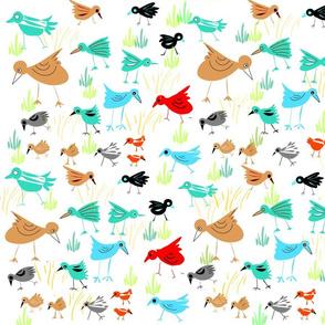 DESERT_BIRDS-new