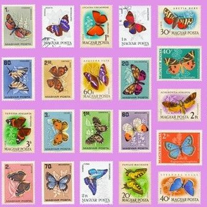 butterfly postage stamps from Hungary, life-sized on pink