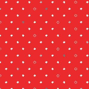 Maple Dot, Flag