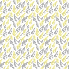 Happy Ferns
