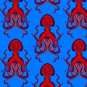 Small Squid