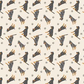 Tiny Beaucerons - tan