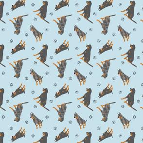 Tiny Beaucerons - blue