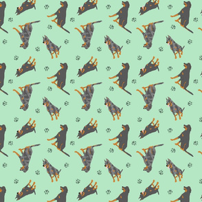 Tiny Beaucerons - green