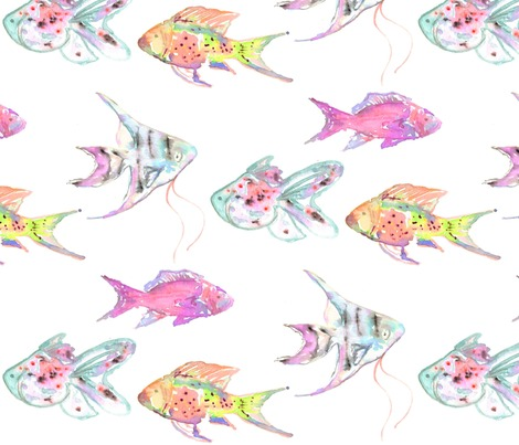 Rrraquariumfish4_contest135870preview