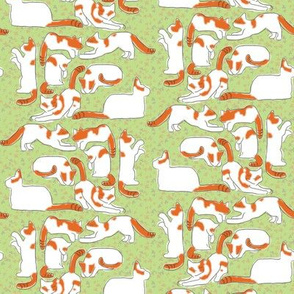 Orange and White Cats on Green