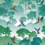 Macaw Canopy