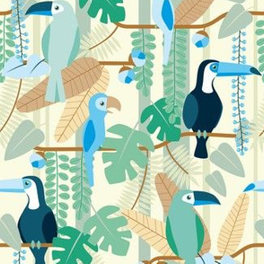 rainforest birds blue & brown