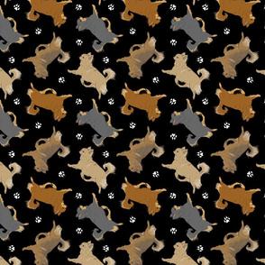 Trotting long coat Chihuahuas and paw prints - black