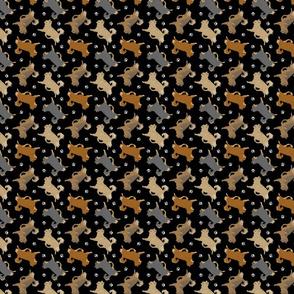 Trotting long coat Chihuahuas and paw prints - tiny black