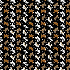 Trotting long coat Chihuahuas and paw prints B - tiny black