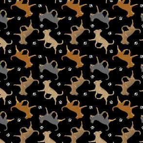 Trotting smooth coat Chihuahuas and paw prints - black