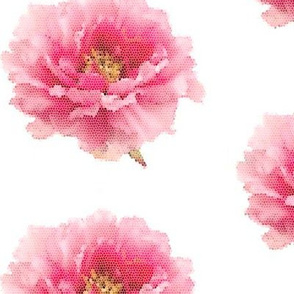 Pink Peony Micro Mosaic Tile on White