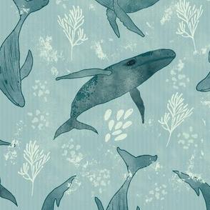 Majestic Humpback Whales
