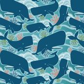 Aquatic Life Whales