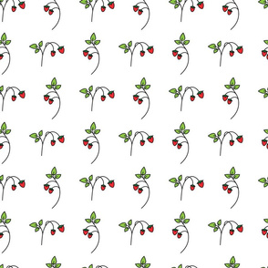 Strawberry_Wht