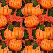 Pumpkin Path 1
