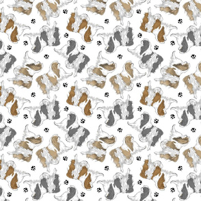 Trotting Japanese Chin and paw prints - white