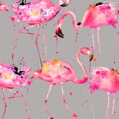 flamingo repeat on gray
