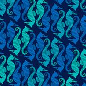 Seepferdchen2