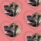 Leonberger Pawprint Hearts