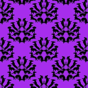 Custom Doxie Damask Black on Purple