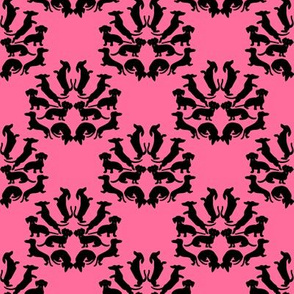 Custom Doxie Damask Black on Pink