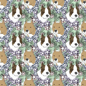 Floral American Staffordshire Terrier portraits B