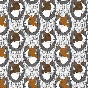 Miniature colored Bull Terrier horseshoe portraits