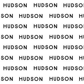 Hudson Fabric
