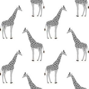 giraffe fabric safari animals nursery fabric baby nursery grey