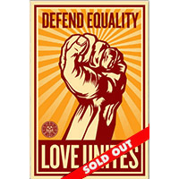 Defend Equality Love Unites