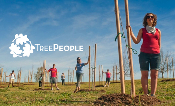 The TreePeople 2012 Green City Challenge